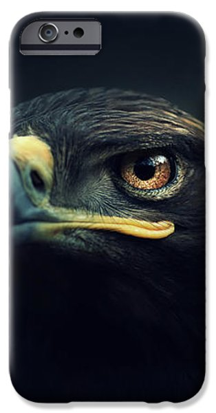 Brown iPhone 6 Case - Eagle by Zoltan Toth