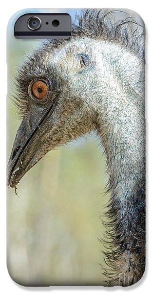 Emu 3 IPhone 6 Case