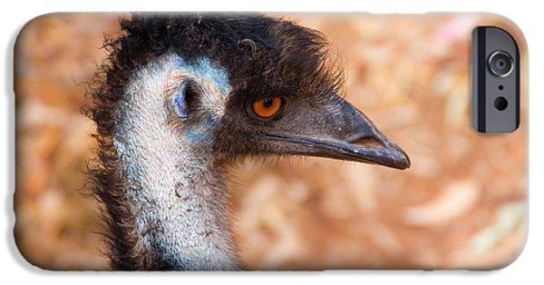 Emu iPhone Cases - Emu Profile iPhone Case by Mike  Dawson