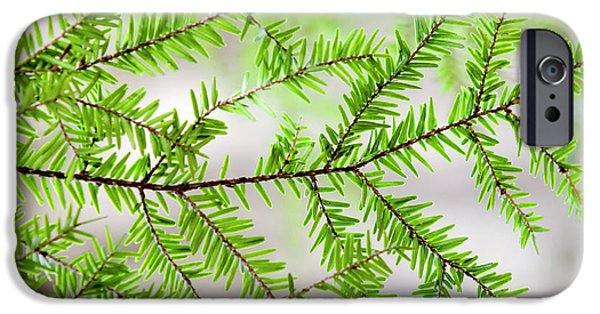 IPhone 6 Case featuring the photograph Evergreen Abstract by Christina Rollo