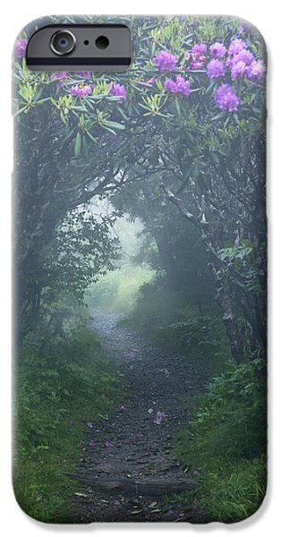 Misty Prints iPhone Cases - Fairy Path iPhone Case by Rob Travis