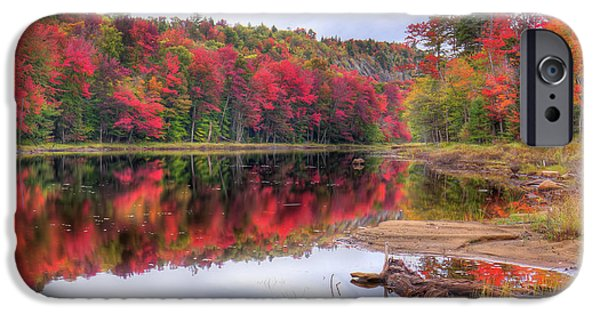 IPhone 6 Case featuring the photograph Fall Color At The Pond by David Patterson