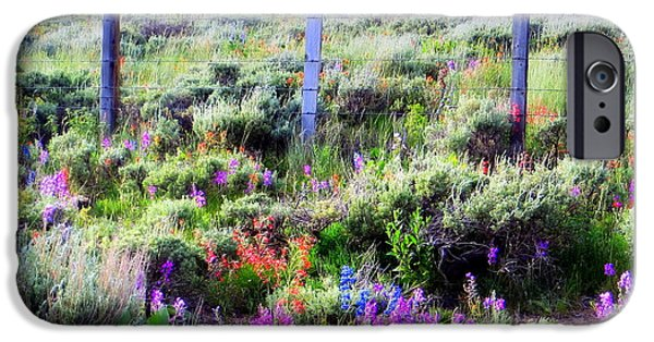 Field Of Wildflowers IPhone 6 Case