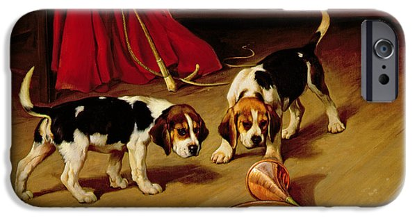 Puppies iPhone Cases - First Introduction iPhone Case by Wright Barker