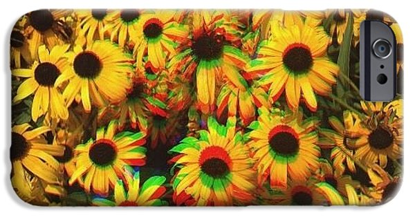 Flower Trip IPhone 6 Case