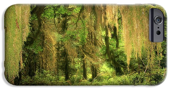 Tendrils iPhone Cases - Forest Fantasy - Quinault - Gateway to Paradise on the Olympic Peninsula WA iPhone Case by Christine Till