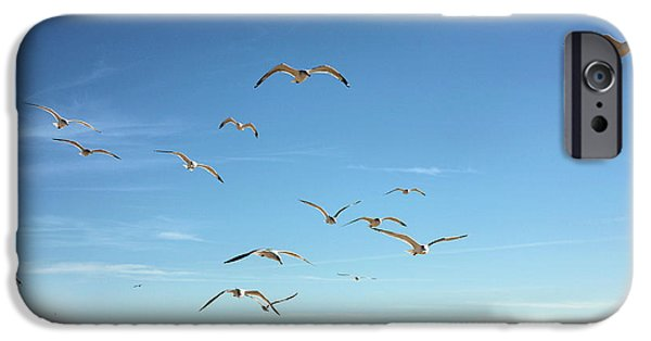 Seagull iPhone Cases - French Fries iPhone Case by JC Findley