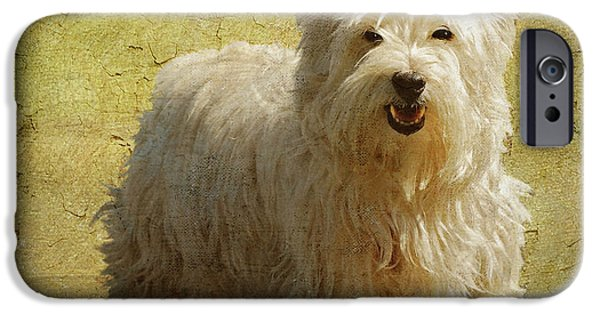 Dogs Digital Art iPhone Cases - Friendly Smile iPhone Case by Lois Bryan
