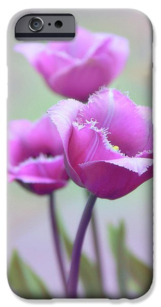 IPhone 6 Case featuring the photograph Fringe Tulips by Jessica Jenney