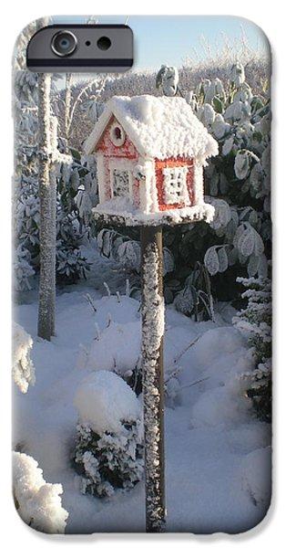 Asbjorn Lonvig Digital iPhone Cases - Frozen Bird Box iPhone Case by Asbjorn Lonvig