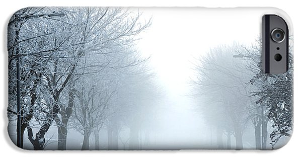Wolf Picture Art iPhone Cases - Frozen Fog iPhone Case by Svetlana Sewell
