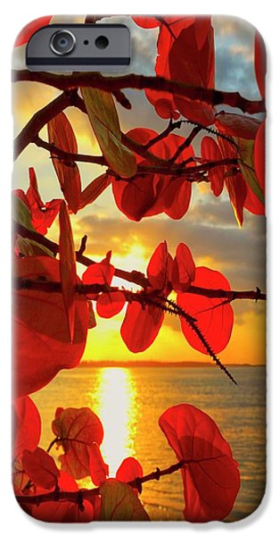 Ocean iPhone 6 Case - Glowing Red by Stephen Anderson