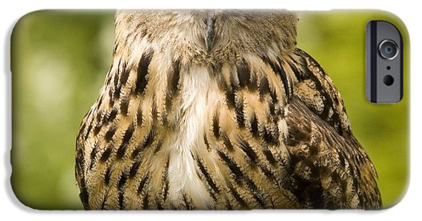United iPhone Cases - Great horned owl iPhone Case by Ian Middleton