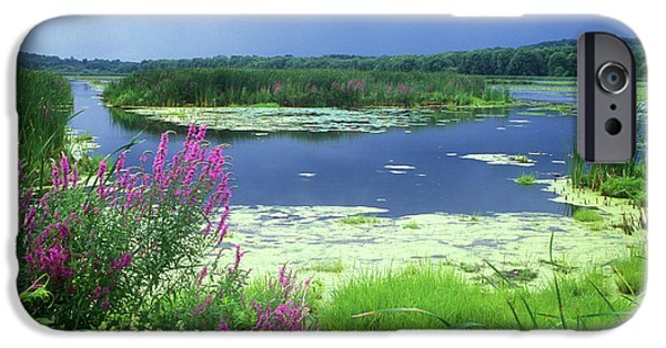 Best Sellers -  - Concord Massachusetts iPhone Cases - Great Meadows National Wildlife Refuge iPhone Case by John Burk