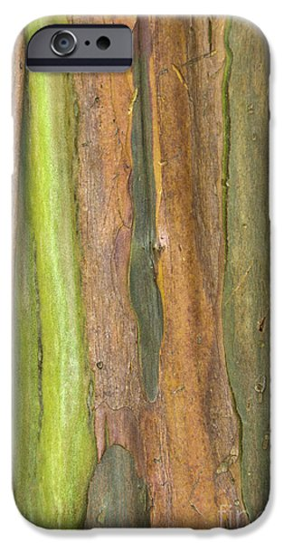 IPhone 6 Case featuring the photograph Green Bark 3 by Werner Padarin