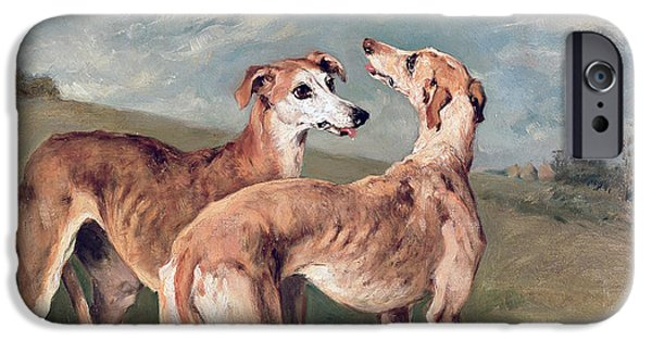 Working Dogs iPhone Cases - Greyhounds iPhone Case by John Emms