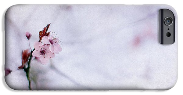 Cherry Blossoms Photographs iPhone Cases - Haiku Two iPhone Case by Rebecca Cozart