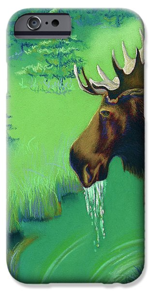 American Pastels iPhone Cases - Highlands iPhone Case by Tracy L Teeter