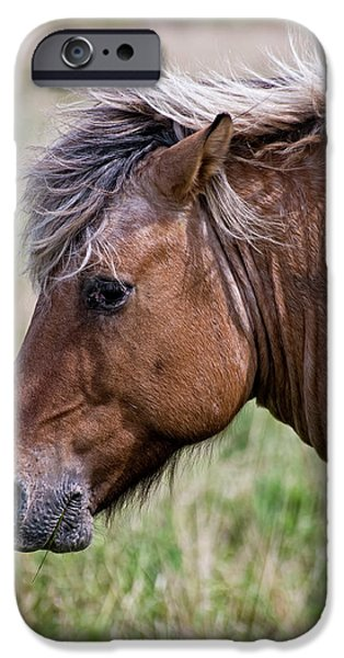 Michael Mixed Media iPhone Cases - Horse Portrait iPhone Case by Michael Cummings