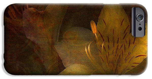 Day Lilies iPhone Cases - Illumination iPhone Case by Bonnie Bruno