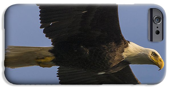 IPhone 6 Case featuring the photograph In Flight by Gary Lengyel