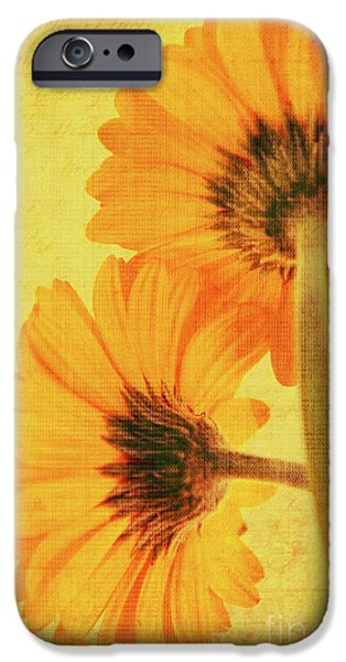 Decorativ iPhone Cases - In summertime iPhone Case by Angela Doelling AD DESIGN Photo and PhotoArt