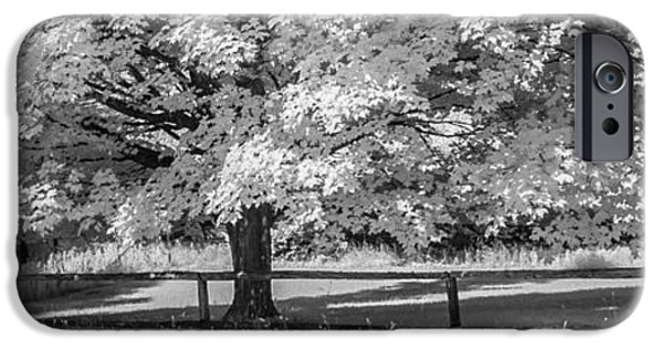 Old Barns iPhone Cases - Ir Fence iPhone Case by David Heilman