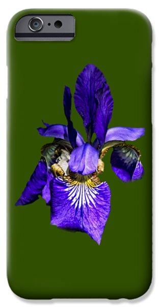 IPhone 6 Case featuring the photograph Iris Versicolor by Mark Myhaver