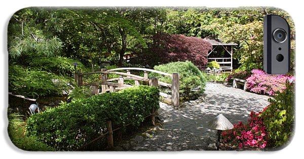 Garden iPhone Cases - Japanese Garden Path with Azaleas iPhone Case by Carol Groenen