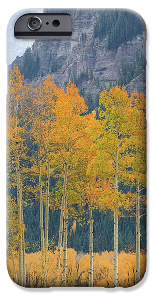 Just The Ten Of Us IPhone 6 Case by David Chandler