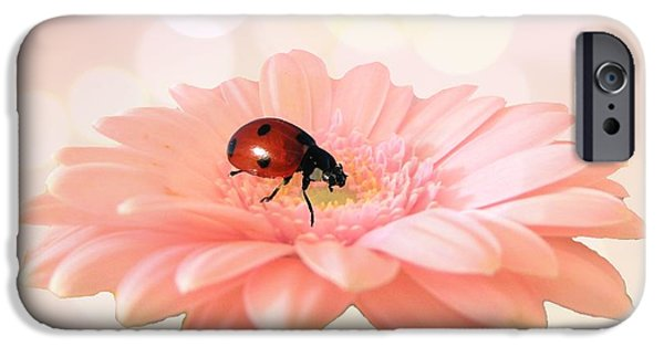 Daisy iPhone Cases - Lady on pink iPhone Case by Sharon Lisa Clarke