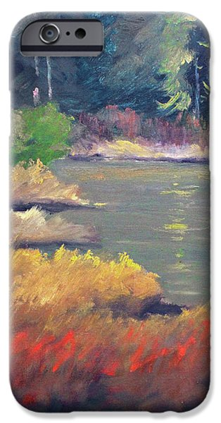 IPhone 6 Case featuring the painting Lagoon by Nancy Merkle