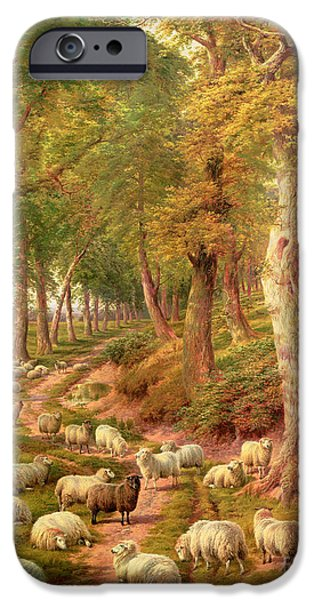 Farm iPhone Cases - Landscape with Sheep iPhone Case by Charles Joseph
