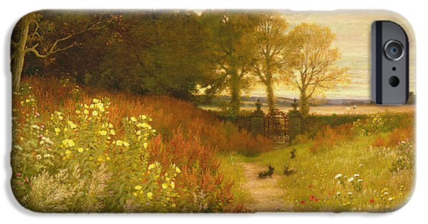 Rural Landscapes iPhone Cases - Landscape with Wild Flowers and Rabbits iPhone Case by Robert Collinson