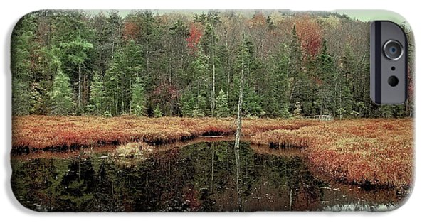 IPhone 6 Case featuring the photograph Last Of Autumn On Fly Pond by David Patterson