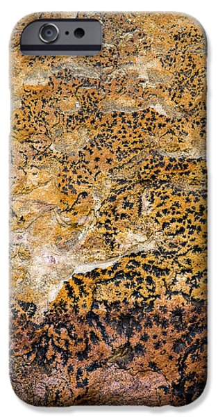 IPhone 6 Case featuring the photograph Lichen Abstract, Bhimbetka, 2016 by Hitendra SINKAR