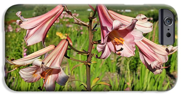 Pen And Ink Photographs iPhone Cases - Lily Of The Valley iPhone Case by Athena Mckinzie