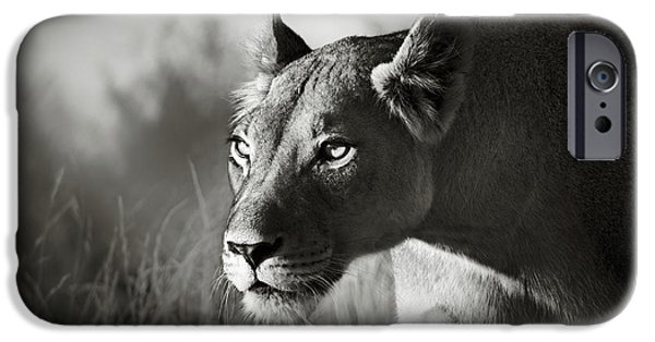 Sepia iPhone 6 Case - Lioness Stalking by Johan Swanepoel