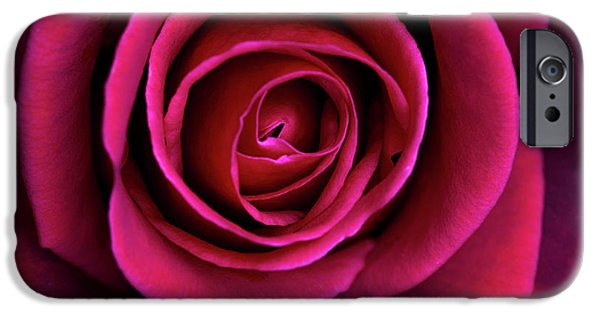 IPhone 6 Case featuring the photograph Love Is A Rose by Linda Lees