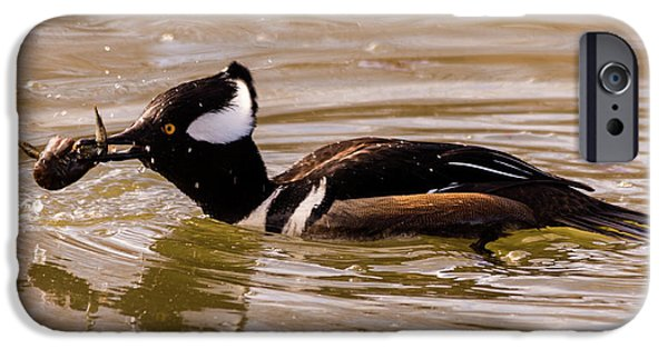 IPhone 6 Case featuring the photograph Lunchtime For The Hooded Merganser by Randy Scherkenbach