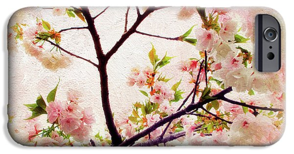 IPhone 6 Case featuring the photograph Asian Cherry Blossoms by Jessica Jenney