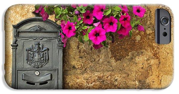 Mailbox With Petunias IPhone 6 Case
