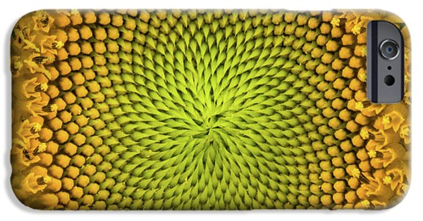 IPhone 6 Case featuring the photograph Mesmerizing by Bill Pevlor