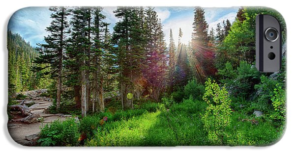 Midsummer Dream IPhone 6 Case by David Chandler