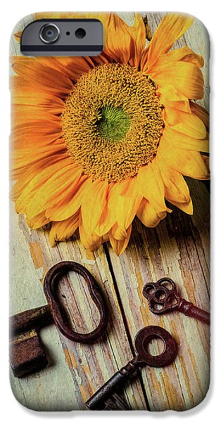 Sunflower Seeds iPhone 6 Case - Moody Sunflower With Keys by Garry Gay