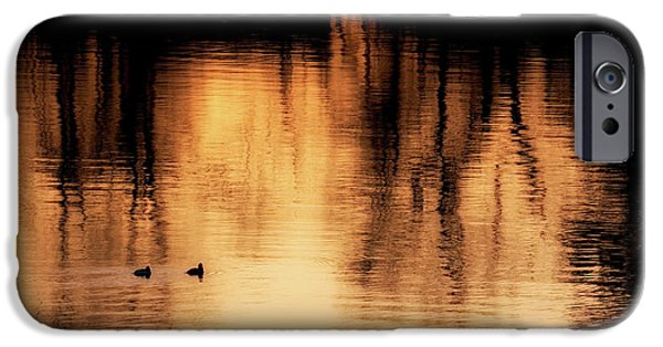 IPhone 6 Case featuring the photograph Morning Ducks 2017 by Bill Wakeley