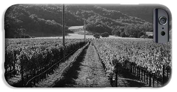 Vineyard Photograph iPhone Cases - Napa Valley Vineyard .  Black and White . 7D9020 iPhone Case by Wingsdomain Art and Photography