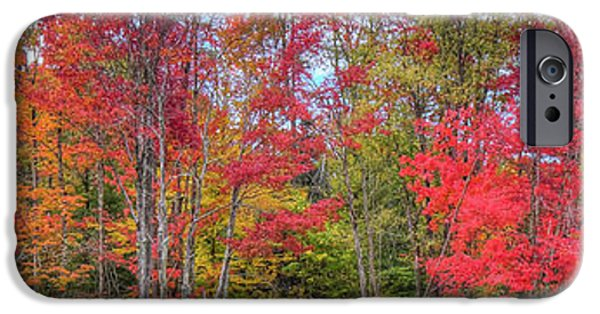 IPhone 6 Case featuring the photograph Natures Autumn Palette by David Patterson