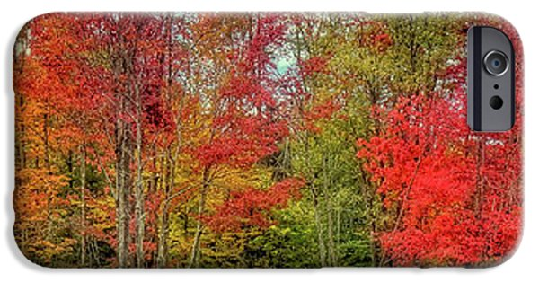 IPhone 6 Case featuring the photograph Natures Fall Palette by David Patterson