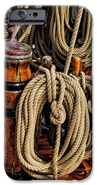 Nautical Knots 17 Oil IPhone 6 Case